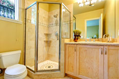 Bathroom with glass door shower Royalty Free Stock Image