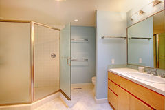 Bathroom with glass door shower Royalty Free Stock Images