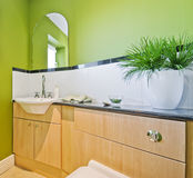 Bathroom in green. Modern luxury bathroom in green with white ceramic suite Royalty Free Stock Image