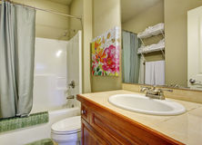 Bathroom with green walls and shower curtain. Stock Images