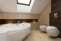 Bathroom interior. Modern bathroom with bath, bidet and toilet Royalty Free Stock Photos