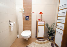 Bathroom interior. Modern bathroom interior, elegant tiles, modern design, light colours, wide angle view, decorative plants Royalty Free Stock Photography