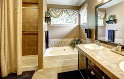 Bathroom interior with bath tub and shower Royalty Free Stock Photos