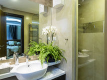 Bathroom interior. Design and elements Stock Images