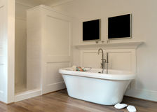 Bathroom interior. Designer bathroom with a modern tub and hardwood floor Stock Photos