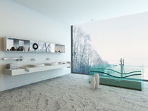 Bathroom interior with double basin and glass bathtub Stock Image
