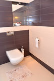 Bathroom interior fragment with the sanitary equipment Royalty Free Stock Photography