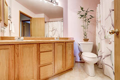 Bathroom interior with light pink walls and double sink vanity Royalty Free Stock Photography
