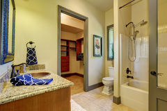 Bathroom interior in olive tones with walk-in closet. Royalty Free Stock Image