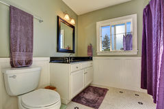 Bathroom interior with olive walls and purple shower curtain Stock Photography