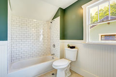 Bathroom interior with white and green wall trim Stock Photography