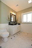 Bathroom interior with white tile and plank wall trim, green wal Stock Photography