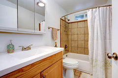 Bathroom interior with wooden vanity cabinet Royalty Free Stock Photography