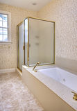 Bathroom interior1 Royalty Free Stock Photo
