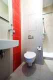 Bathroom with Mirror, pan and shower Stock Images