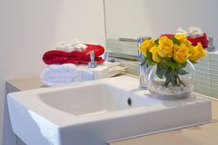 Bathroom in modern townhouse Stock Photography