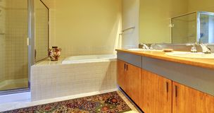 Bathroom with modern wood cabinets, tub and shower. Stock Photography