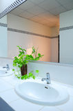 Bathroom at office Royalty Free Stock Photos