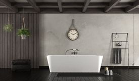 Bathroom in rustic style. With modern bathtub - 3d rendering Stock Images