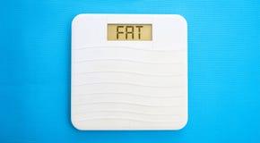 Bathroom scale, display fat Royalty Free Stock Photos