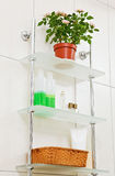 Bathroom shelf with decor Stock Photography