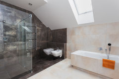 Bathroom with shower and bath Royalty Free Stock Photos
