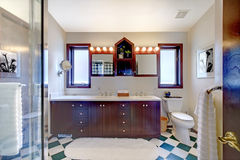Bathroom with shower, dark wood cabinet, square tiles. Royalty Free Stock Photography