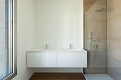 Bathroom with shower and sinks Stock Image