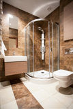 Bathroom with a shower Royalty Free Stock Photos