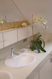 Bathroom sink. An Orchid in a master suite's bathroom stock photo