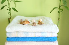 In bathroom. Some towels, sells and bambo Royalty Free Stock Photo