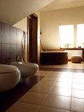 Bathroom with toilet and bidet Stock Images