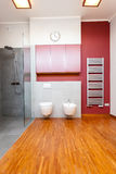 Bathroom with toilet and bidet Royalty Free Stock Images
