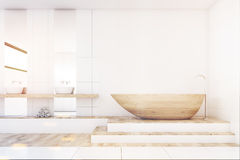 Bathroom with two mirrors, wood, front, toned Royalty Free Stock Images
