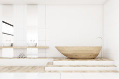 Bathroom with two mirrors, wood, front Royalty Free Stock Photography