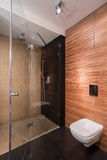 Bathroom with wall imitating wood Royalty Free Stock Photo