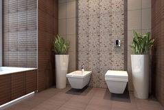 Bathroom with wc Royalty Free Stock Image