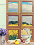 Bathroom Window Stock Image