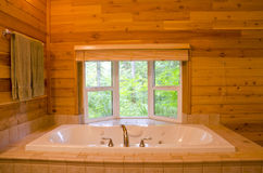 Bathroom in a Wood Cabin Royalty Free Stock Photos