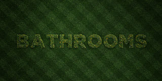 BATHROOMS - fresh Grass letters with flowers and dandelions - 3D rendered royalty free stock image Royalty Free Stock Photos