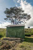 Bathrooms in Tanzania. With acacias on an overcast day, is a vertical image royalty free stock image