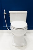 Bathrooms and Toilets. Clean Bathrooms and Toilets system stock photo