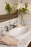 Bathrrom sink Stock Images
