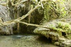 Baths of Aphrodite - Venus, Cyprus Royalty Free Stock Photography
