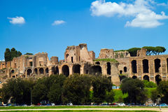Baths of Caracalla Royalty Free Stock Photo