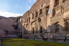 Baths of Caracalla Termas di Caracalla ruins - Rome, Italy. Baths of Caracalla Termas di Caracalla ruins in Rome, Italy Royalty Free Stock Photo