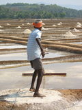 Salt salt extraction food industry India. Baths with salt, Man works salt extraction food industry India, Karnataka, Gokarna, March, 2017 royalty free stock images