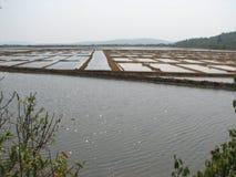 Salt salt extraction food industry India. Baths with salt salt extraction food industry India, Karnataka, Gokarna, March, 2017 stock image