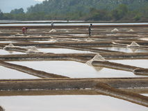 Salt salt extraction food industry India. Baths with salt salt extraction food industry India, Karnataka, Gokarna, March, 2017 royalty free stock photos