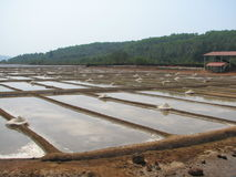 Salt salt extraction food industry India. Baths with salt salt extraction food industry India, Karnataka, Gokarna, March, 2017 royalty free stock photo